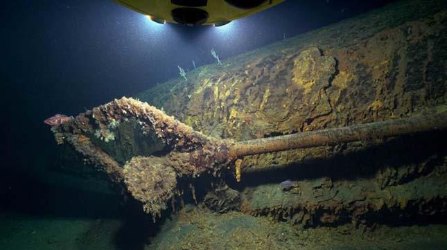 tengeralattjaro-2