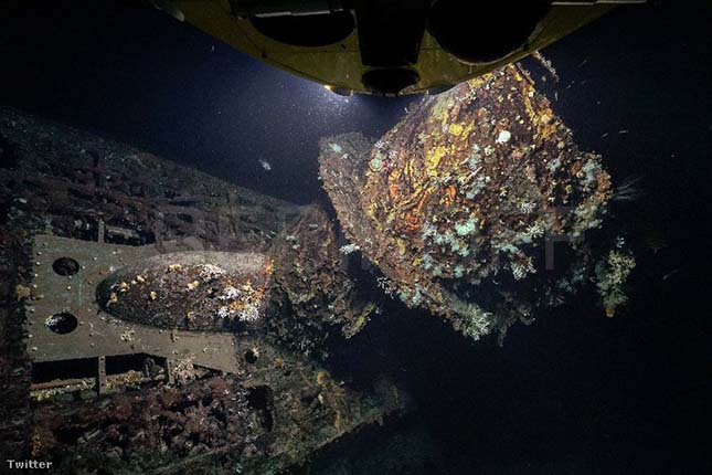 tengeralattjaro
